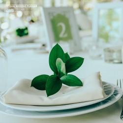 VNWP-Frame-Blog-1080x1080-Tim-hieu-nghe-Wedding-Planner-o-Viet-Nam-01